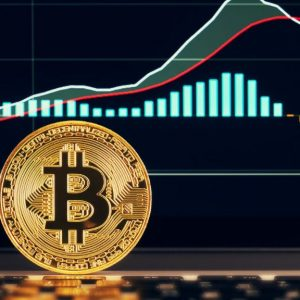 Is It Worth Investing In Crypto Currencies A Guide By Coinstirs